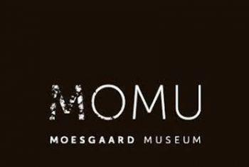 Moesgaard Museum (MOMU)