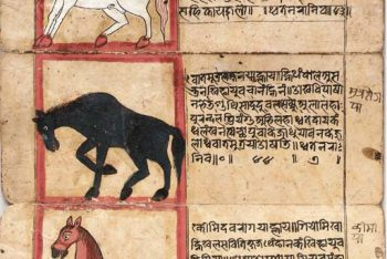 A Treatise on the Nature and Illnesses of Horses, Asvasastra